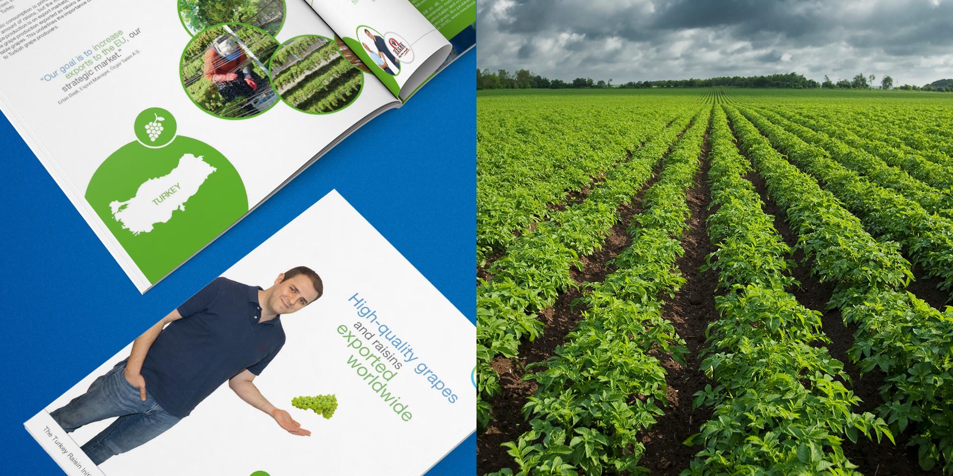 Food Chain Partnership Broschüre